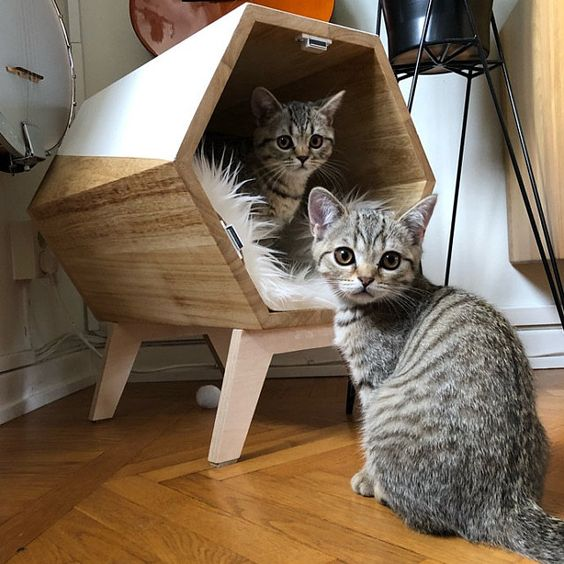 Cat Furniture Design Cat House