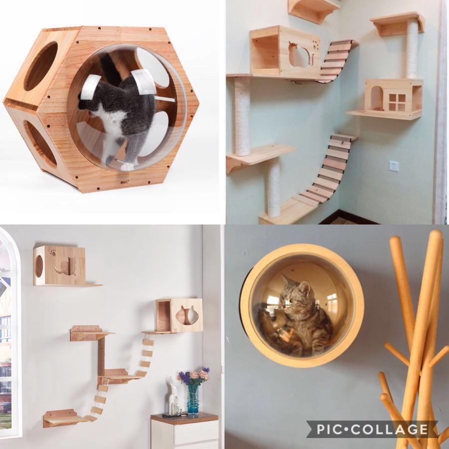 Cat Furniture Design House