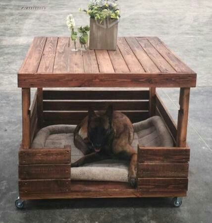 Coffe table dog bed